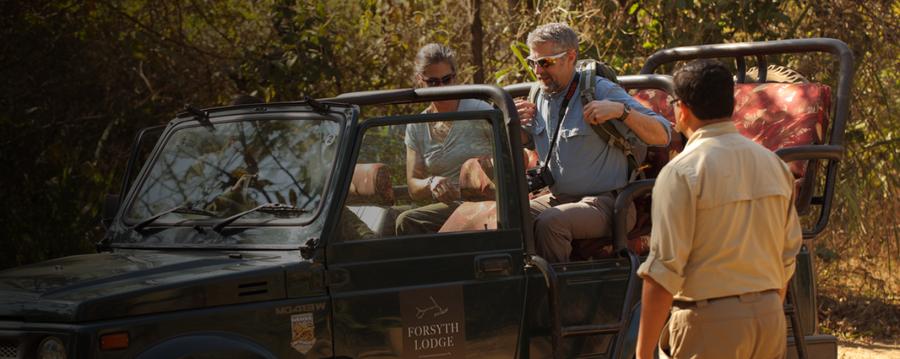 How To Plan Your Next Wildlife Safari!